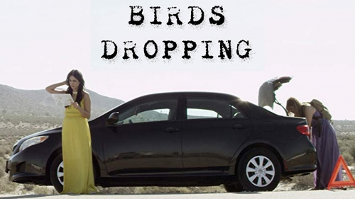 BIRDS DROPPING