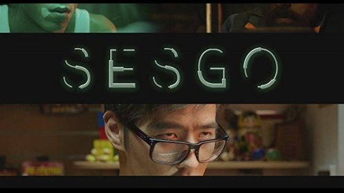 SESGO